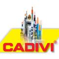 Hướng dẫn lựa chọn dây & cáp hạ thế Cadivi